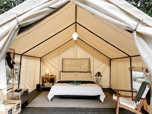 旅游景区创业野奢帐篷酒店